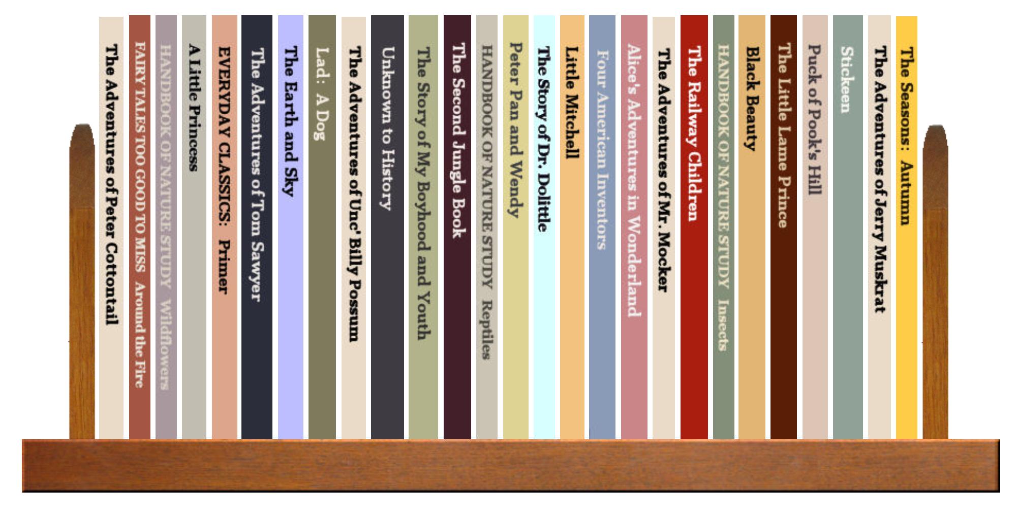 Full Shelf of Books, 2 of 4