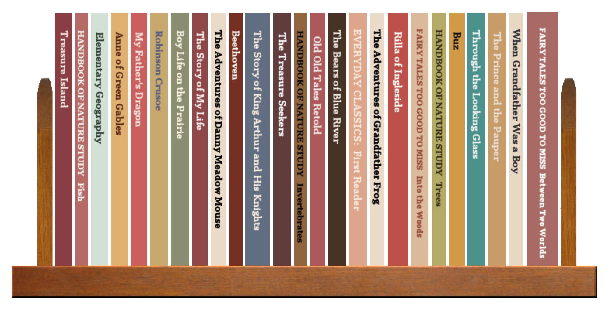 Full Shelf of Books, 3 of 4