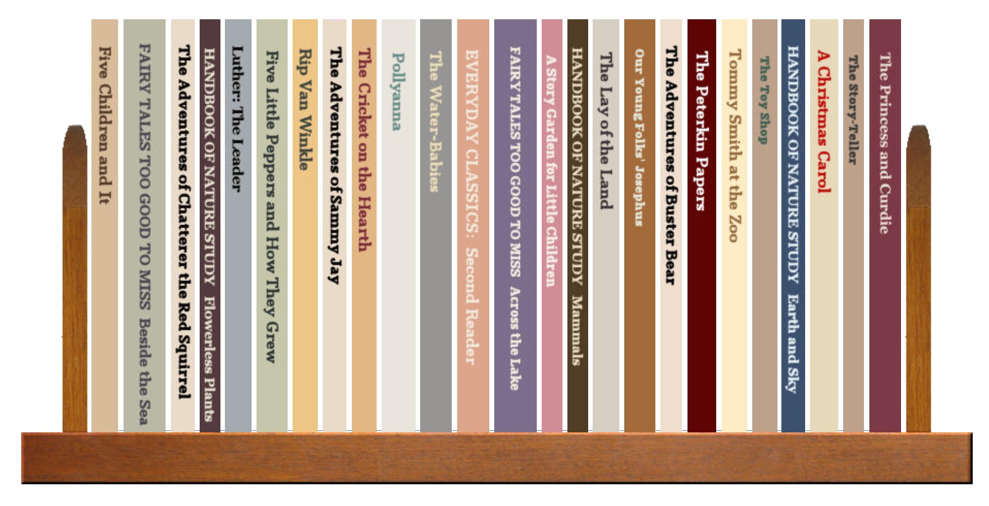 Full Shelf of Books, 4 of 4