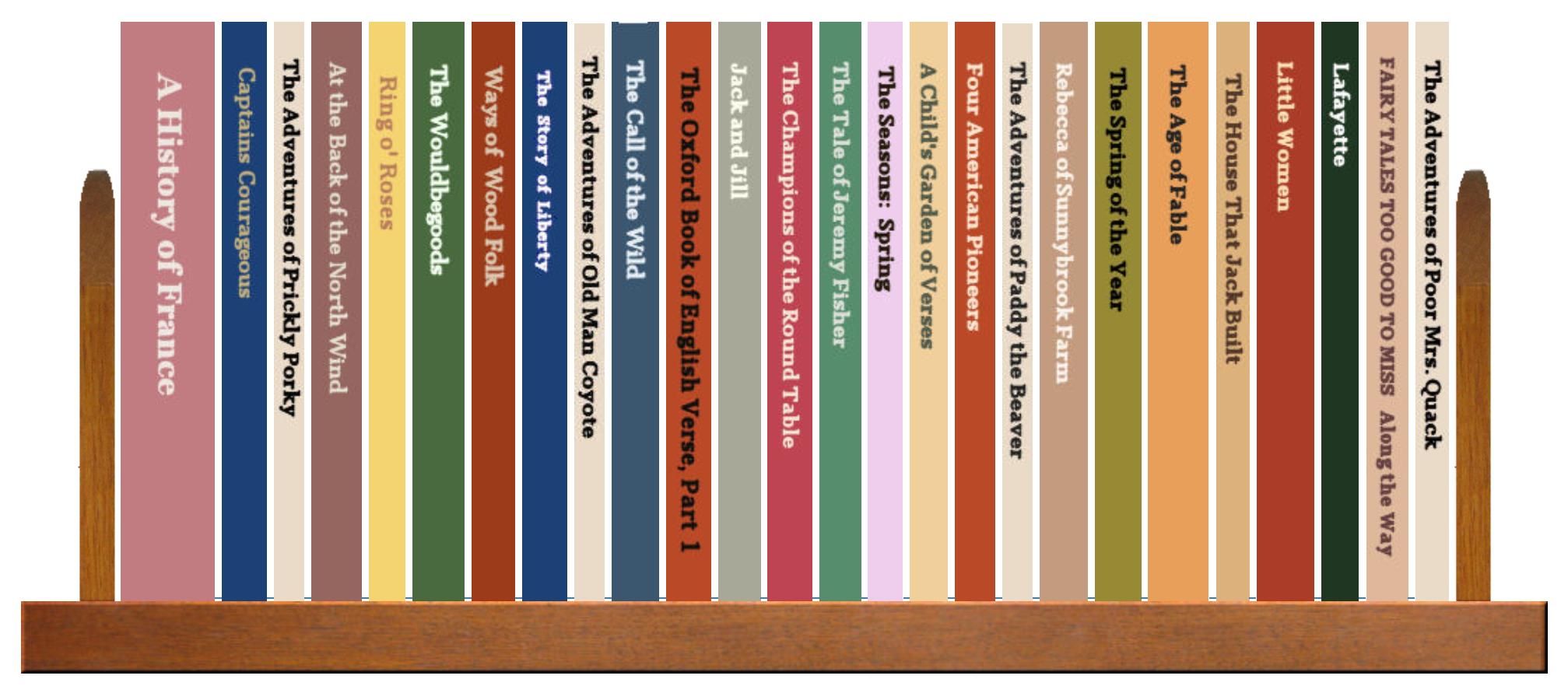 Full Shelf of Books, 1 of 4