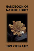Cover of comstock_invertebrates